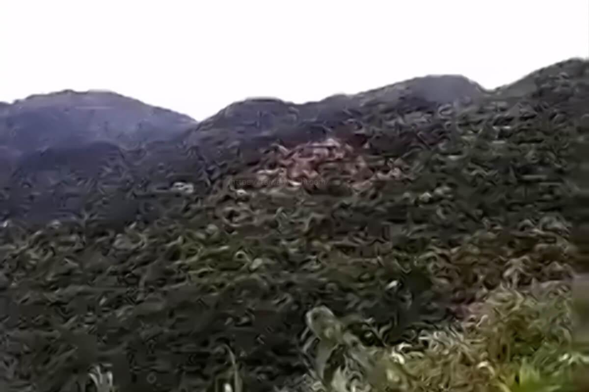 台湾のお墓は景色の良い場所に建てられる